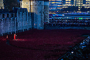 The names of the dead are read out and a bugler plays last post amid a sea of ceramic poppies. Blood Swept Lands and seas of red by Paul Cummins - an artwork in the moat of the Tower of London to mark the centenary of the first world war. 30 oct 2014.