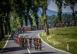 Peloton near Postojna during Stage 1 of 24th Tour of Slovenia 2017 / Tour de Slovenie from Koper to Kocevje (159,4 km) cycling race on June 15, 2017 in Slovenia. Photo by Vid Ponikvar / Sportida