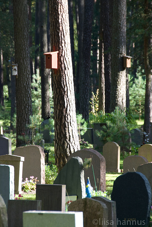Thought is given to both the living and the dead in Skogskyrkogården, or The Woodland Cemetery, as shown by the bird houses attached to the Scots Pine trees among the grave sites. By attracting birds, the cemetery continues the idea of architects Gunnar Asplund and Sigurd Lewerentz that, despite being a resting place for the dead, it should be a living, natural environment.