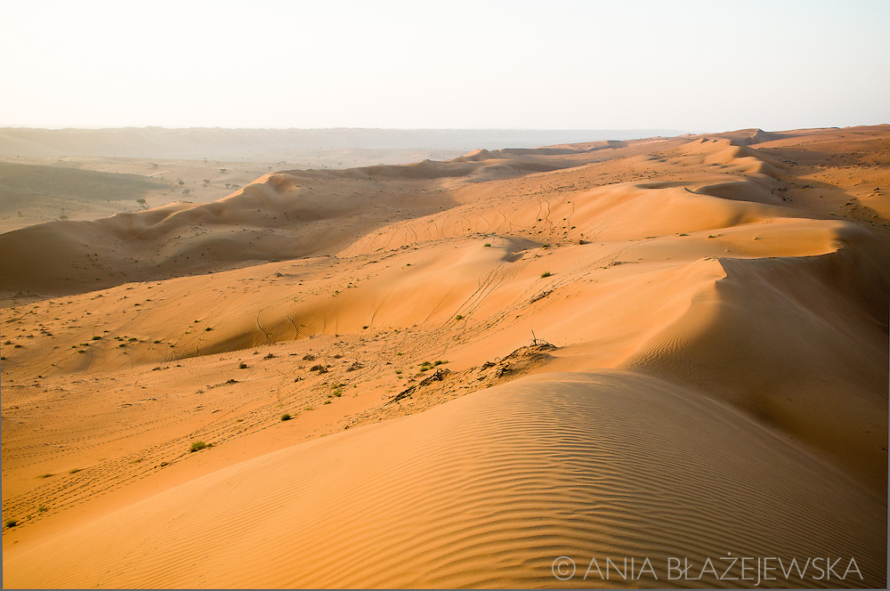Oman, Wahiba Sands. Beautiful Omani desert with amazing patterns on the sand.