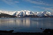 Havsutsikt från Alaska SeaLife Center i Seward där den finska marinbiologen Tuula Hollmen forskar på klimatförändringarnas påverkan på det marina livet i området. Under denna tid har hon med egna ögon kunnat se hur glaciärerna smälter och ekosystemen rubbas.
