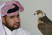 Mr. Hamad reviewing falcons at the Falcon shop.