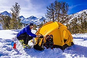 Yellow dome tent and backcountry skier, John Muir Wilderness, Sierra Nevada Mountains, California  USA