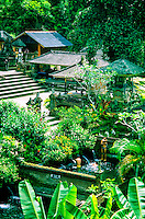 Holy Spring (and Bathing Pools), Sebatu (near Ubud), Bali, Indonesia