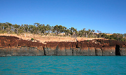 A small boab clings to the rocks at Careening Bay on the Kimberley coast.