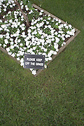 close up of a flowerbed with fresh grass and warning sign