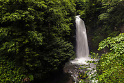 Waterfall abounding in water in a forest