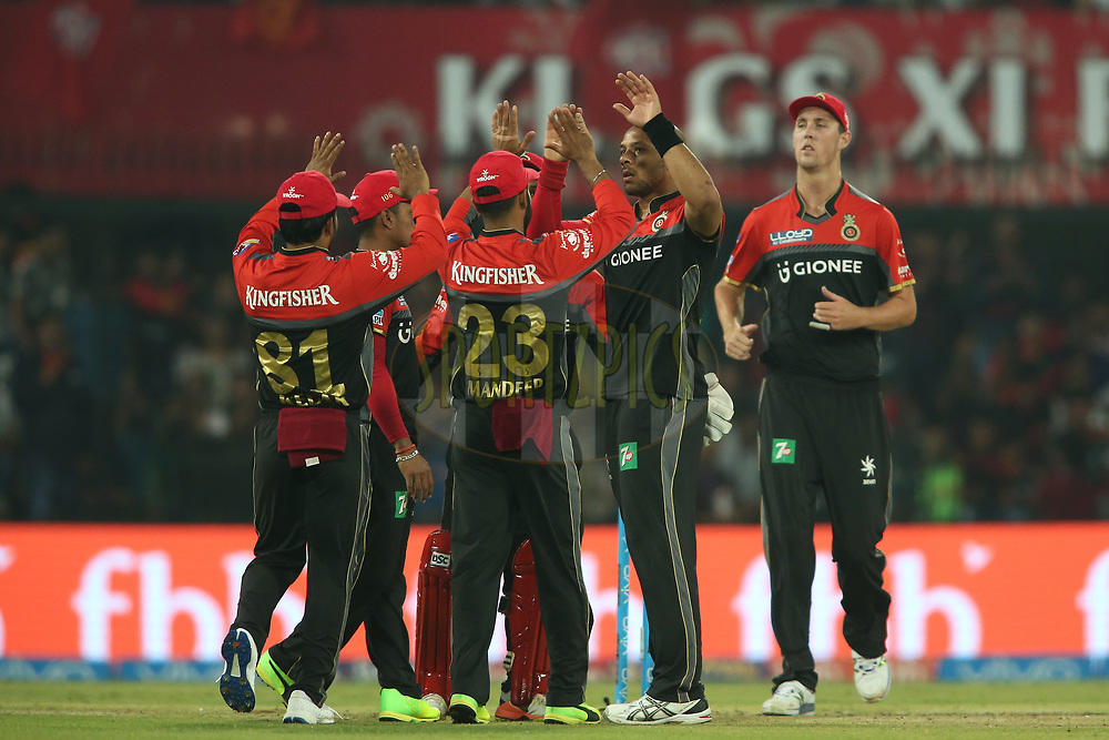 Tymal Mills of the Royal Challengers Bangalore is congratulated for getting Manan Vohra of Kings XI Punjab wicket during match 8 of the Vivo 2017 Indian Premier League between the Kings XI Punjab and the Royal Challengers Bangalore held at the Holkar Cricket Stadium in Indore, India on the 10th April 2017<br /> <br /> Photo by Shaun Roy - IPL - Sportzpics