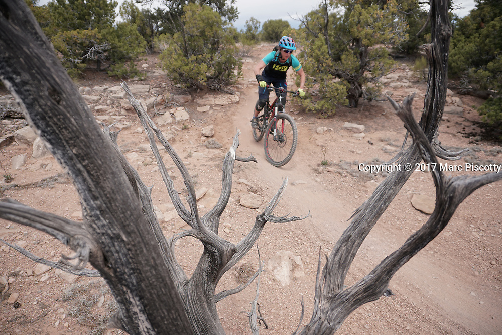 SHOT 5/21/17 12:21:23 PM - Emery County is a county located in the U.S. state of Utah. As of the 2010 census, the population of the entire county was about 11,000. Includes images of mountain biking, agriculture, geography and Goblin Valley State Park. (Photo by Marc Piscotty / © 2017)