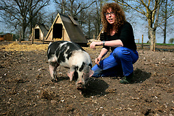 UK ENGLAND WILTSHIRE CHITTERNE 15APR07 - Jill Allen (43) with piglets at the Paradise Pig Farm run by Tony York and Carron McCann. Under the 'Pig Perfect' banner the two run a joint farm specialising in rare breeds and offer courses on pig keeping...jre/Photo by Jiri Rezac..© Jiri Rezac 2007..Contact: +44 (0) 7050 110 417.Mobile:  +44 (0) 7801 337 683.Office:  +44 (0) 20 8968 9635..Email:   jiri@jirirezac.com.Web:    www.jirirezac.com..© All images Jiri Rezac 2007 - All rights reserved.