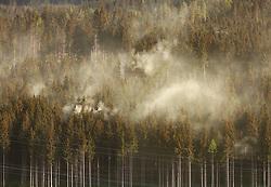 THEMENBILD - Pollenwolken über einem Nadelwald, aufgenommen am 28. April 2018, Kaprun, Österreich // Pollen clouds over a coniferous forest on 2018/04/28, Kaprun, Austria. EXPA Pictures © 2018, PhotoCredit: EXPA/ Stefanie Oberhauser