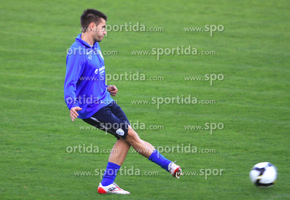 Luka Elsner at practice of Slovenian men National team, on October 13, 2008, in Domzale, Slovenia.  (Photo by Vid Ponikvar / Sportal Images)