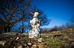 THEMENBILD - Wetter, Sonniger und warmer Wintertag an den Steinhofgründen. Aufgenommen am 08.01.2016 in Wien, Österreich // warm and sunny winter day in Vienna. Austria on 2016/01/08. EXPA Pictures © 2016, PhotoCredit: EXPA/ Michael Gruber