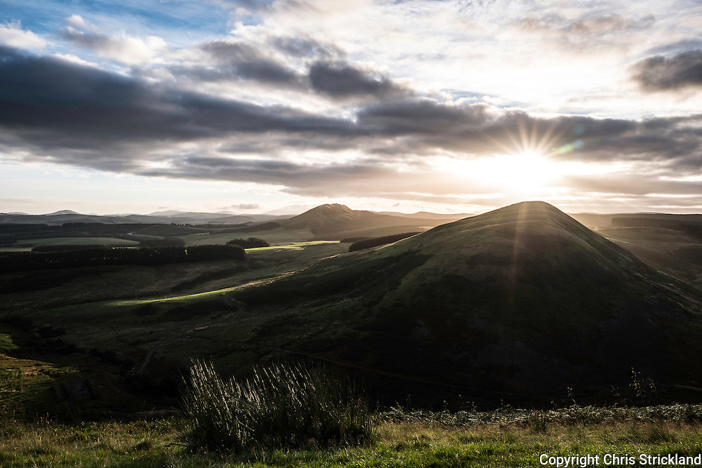 Wooplaw, Jedburgh, Scottish Borders, UK. 1st September 2016. The sun rises behind Hophills Nob (359m) in the Cheviot Hills on the Anglo Scot Border.