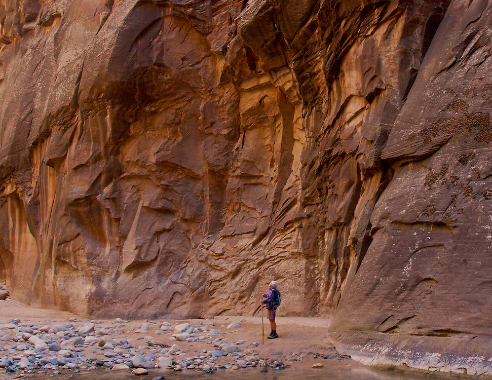 A hiker takes in the magnificent sandstone walls of the Narrows Trail, Zion National Park, Utah