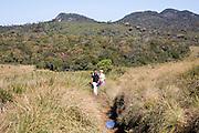 Walkers in Horton Plains national park montane grassland environment, Sri Lanka, Asia