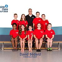 David Bédard