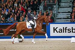 Verlouw Cora (NED) - Eye Catcher<br /> KWPN Hengstenkeuring - 's Hertogenbosch 2013<br /> © Dirk Caremans