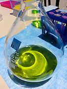 Science fair. Photographed in Haifa, Israel