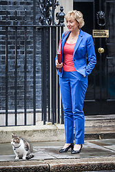 © Licensed to London News Pictures. 02/08/2016. London, UK.  Secretary of State for Environment, Food and Rural Affairs Andrea Leadsom stands next to Larry the cat on Downing Street after a meeting of the Cabinet Committee on Economy and Industrial Strategy. Photo credit: Rob Pinney/LNP