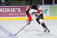 KELOWNA, CANADA - DECEMBER 8: Caleb Belter #17 of the Prince George Cougars skates on the ice at the Kelowna Rockets on December 8, 2012 at Prospera Place in Kelowna, British Columbia, Canada (Photo by Marissa Baecker/Shoot the Breeze) *** Local Caption ***