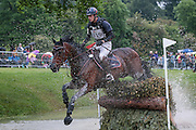PICA D'OR ridden by Maxime Livio at Bramham International Horse Trials 2016 at  at Bramham Park, Bramham, United Kingdom on 11 June 2016. Photo by Mark P Doherty.