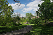 Path near the Harlem Meer in Central Park