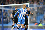 Brighton striker, Bobby Zamora (25) during the Sky Bet Championship match between Brighton and Hove Albion and Bolton Wanderers at the American Express Community Stadium, Brighton and Hove, England on 13 February 2016.