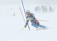 Carnival Collegiate slalom at Cannon Mountain. ©2014 Karen Bobotas Photographer