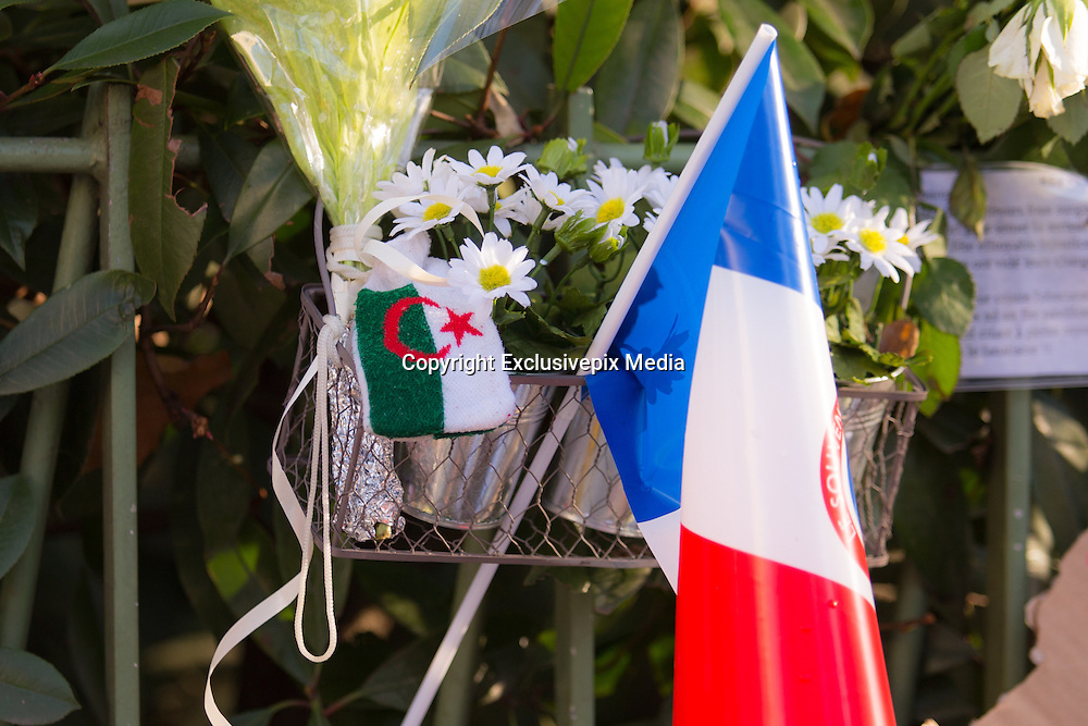 ATTACKS OF PARIS - FLAGS OF THE WORLD FACING BATACLAN<br /> &copy;Exclusivepix Media