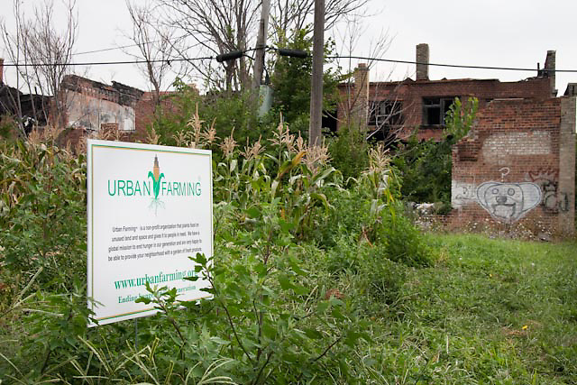 Detroit Urban Farm on Linwood and and Gladstone, near East Willie