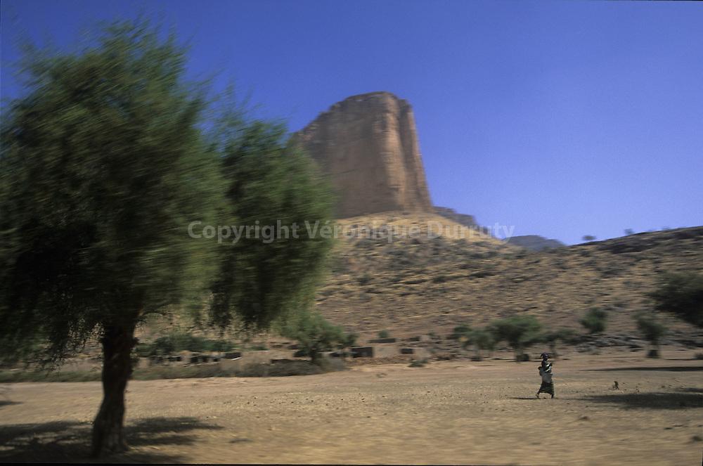 deserts : HOUBARI, MALI.