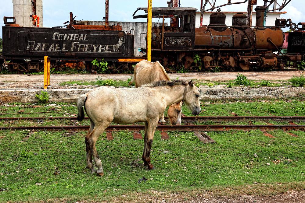 Old train in Cuba.