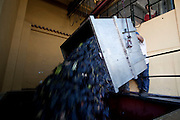 Douro wine harvest - Vindimas<br />