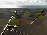 Nederland, Flevoland, Noordoostpolder, 16-04-2012; Vuurpad, met bloembollenvelden en akkers die op het punt van bloeien staan. Boerderijen en kavels op regelmatige onderlinge afstand, voorbeeld van moderne grootschalige polder met rationele verkaveling. De aanleg van de polder maakte deel uit van de Zuiderzeewerken (plan Lely) en viel in 1942 droog. De meeste boerderijen (en dorpen) zijn van na de tweede wereldoorlog. The northeast polder (NOP), is an example of modern large-scale polder with rational allotment. The construction of the polder was part of the Zuiderzee Works (Lely plan), in 1942 the polder was dry. Most of the building, farmhouses and villages, is post-war...QQQ.luchtfoto (toeslag), aerial photo (additional fee required).foto/photo Siebe Swart