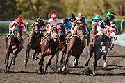 Keeneland  2011 Fall Meet