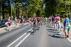 Peloton with leading riders of Team Giant - Alpecin (GER) on the Grebbeberg at Rhenen, stage 2 from Arnhem to Nijmegen running 190 km of the 99th Giro d'Italia (UCI WorldTour), The Netherlands, 7 May 2016. Photo by Pim Nijland / PelotonPhotos.com | All photos usage must carry mandatory copyright credit (Peloton Photos | Pim Nijland)