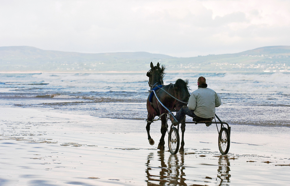 Exercising harness racing trotting horse on Magilligan Strand beach at Benone, near Castlerock, County Derry, Northern Ireland.
