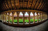 Abbaye&nbsp;b&eacute;n&eacute;dictine Saint-Fortun&eacute; de Charlieu<br /> L'abbaye est fond&eacute;e en 872 par Boson, roi de Bourgogne et Ratbert, &eacute;v&ecirc;que de Valence en un lieu d'abord nomm&eacute; Sornin que le moines rebaptis&egrave;rent Charlieu (carus locus). Elle fut plac&eacute;e sous le contr&ocirc;le direct du Saint-Si&egrave;ge, et fut consacr&eacute;e en 1094. L'avant nef (narthex) a &eacute;t&eacute; ajout&eacute; au XIIe si&egrave;cle. Il n'en demeure que le premier niveau de la fa&ccedil;ade ouest et les piliers de la premi&egrave;re trav&eacute;e.<br /> &nbsp;<br /> St. Fortunatus' Abbey, Charlieu (Benedictine abbey). The monastery, dedicated to Saint Fortunatus, was founded in 872, by Boson, King of Burgundy. Its patrons were Ratbertus, bishop of Valence, in a place they called Carus Locus, and dedicated to Saint Stephen and Saint Fortunatus, patron of Valence.&nbsp; The abbey was placed under the direct control of the Holy See. The abbey church was consecrated in 1094. A narthex was added in the twelfth century.