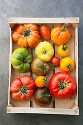Heirloom tomatoes in a box at Worton Organic Farm Shop. Tomato 'Gold Medal', 'Orange Banana', 'Black Sea Man', 'Stupice', 'Orange Russian', 'Believe It or Not', 'Wapsipinicon', 'White Queen', 'Aunt Ruby's German Green', 'Nyagous', 'Caro Rich', 'Brandywine', 'Sudduth's Strain', 'Jaune Flamme'