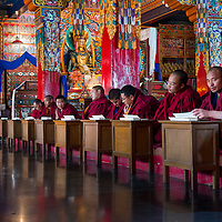 Prayer at Tibetan YungDrung Bon Monastery at Dolanji.