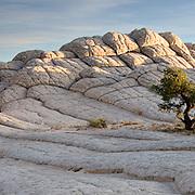 Paria Plateau, Arizona