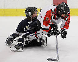 New Jersey Bandits defeat the Skyland Kings 5-0.  12 saves for Cole.  Squirt AA game at Ice Vault