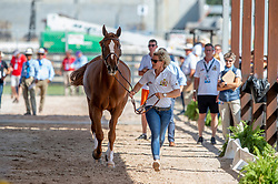 Ducoffre Jenny, groom, Verlooy Jos, BEL, Igor<br /> World Equestrian Games - Tryon 2018<br /> © Hippo Foto - Jon Stroud<br /> 22/09/2018
