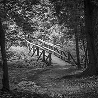 Pennsylvania black and white