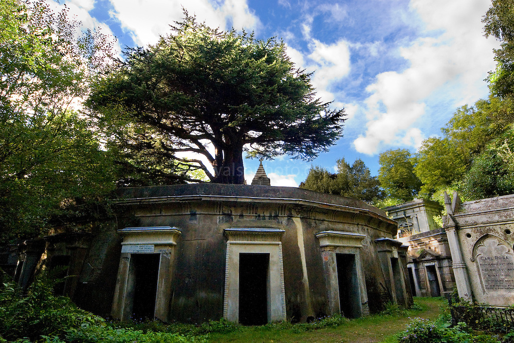 Highgate Cemetery London - Circle of Lebanon, named after the Lebanese Cedar on top!