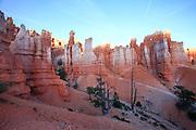 Bryce Canyon, National Park, Utah, USA