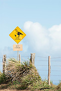 A sign warns of Nene crossing on the ilsand of Molokai, Hawaii.