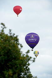 © Licensed to London News Pictures.  13/08/2017; Bristol, UK. Bristol International Balloon Fiesta 2017. The Tribute balloon, one of the official sponsors, during the final mass ascent on Sunday evening and balloons flew close to the Clifton Suspension Bridge watched by crowds. Picture credit : Simon Chapman/LNP