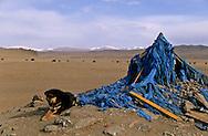 Mongolia. Oboo, buddhist shamanist place . in the height lakes area near Avrakaer (Ovokhangai)